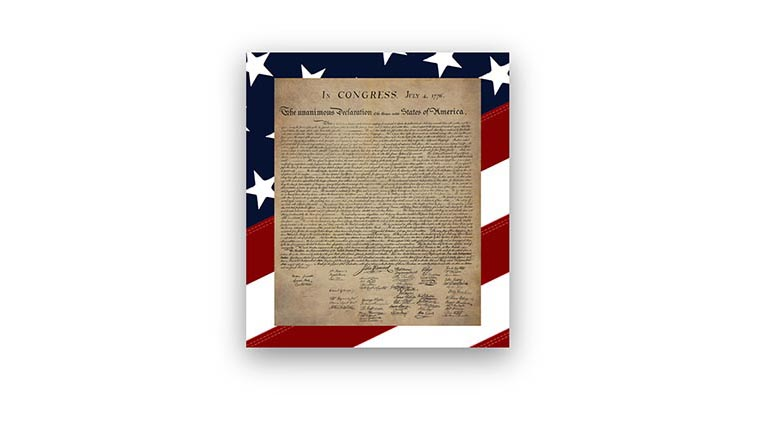 USA Wall Art Vinyl Wall Decals